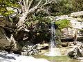 Wasserfall-.JPG