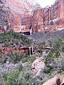 Waterfall at Emerald Pools - Flickr - brewbooks (1).jpg