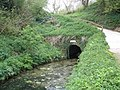 Waytown Tunnel, Grand Western Canal - geograph.org.uk - 1266680.jpg