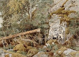 Sammaleinen kallio metsässä