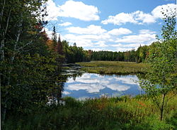 Much of the town is wild national forest land - wooded hills sprinkled with bogs and little lakes, like this one along CTH D.