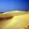 White Dune - Mui Ne.jpg