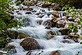 Wildwasser (234623369).jpeg