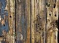 Wood (126508819).jpeg