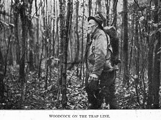 Trapline - A photo of a trapper on his line from the 1913 American autobiography Fifty Years a Hunter and Trapper