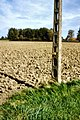 World-war-one-belgium-iron-harvest-telegraphpole.redvers.jpg