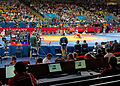 Wrestling Arena,Excel Centre, London 2012 (8374051590).jpg
