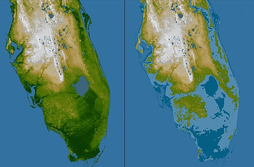 Zuid-Florida reliëf.jpg