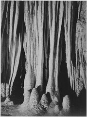 """Formation along trail in the Big Room, near 'the Temple of the Sun,' Carlsbad Caverns National Park,"" New Mexico. (vert - NARA - 520046.tif"