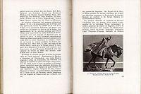"""""""Lille"""" par le Lieutenant Feulner - Page 174 et 175.jpg"""