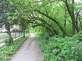 Буський парк.jpg