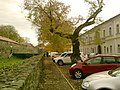 Біля Ужгородського замку Near Uzhgorod Castle 22.10.10 - panoramio.jpg