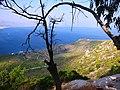 Вид на Коринфский залив с горы Герания - panoramio.jpg