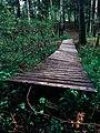Деревянный мостик.jpg