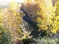 Долина р. Миасс (дер. Прохорово) - panoramio (52).jpg