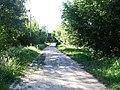 Дорога в центр - panoramio (2).jpg