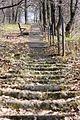 Лестница (2010.04.28) - panoramio - Aleksey Igonin.jpg