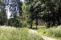 Летний полдень в Мамонтовке. - panoramio.jpg
