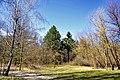 Лісопарк у Гідропарку.jpg