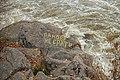 Написи на порогах біля млина, осінь 2014.jpg