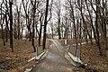 Парк-пам'ятка садово-паркового мистецтва загальнодержавного значення «Кагарлицький» IMG 0624.jpg
