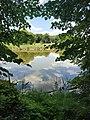 Полчаниновский пруд.jpg
