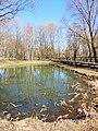 Правобережная старица реки Яузы с рогозником на участке долины реки Яузы между Широкой и Осташковской ул. 02.jpg