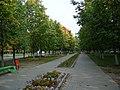Проспект Ленина проспект (The Lenin's boulevard) - panoramio.jpg