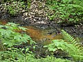 Сергиевка. Река Кристателька, восточная протока 01.jpg
