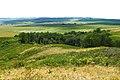Слудные горы. Вид с высоты 334,2 в западном направлении - panoramio.jpg