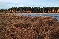 Чистое озеро - 6.jpg