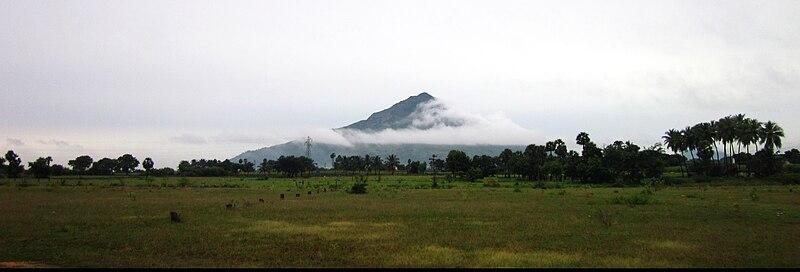 File:திருவண்ணாமலை.jpg