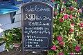 【苗栗景點】山芙蓉藝術庭園 (31907471543).jpg