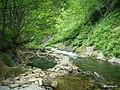 イシカリベツ川 - panoramio.jpg