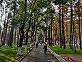 中山公园112400.jpg