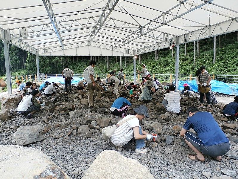 野外恐竜博物館での化石発掘体験