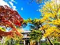 千秋公園の紅葉04.jpg