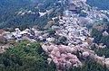 吉野山 上千本からの眺め Yoshino-yama, view from Kami-sembon 2014.4.12 - panoramio.jpg