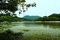 嘉陵风光之苟溪河湿地 - panoramio.jpg