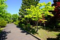 平岡樹芸センター(Hiraoka arboriculture center) - panoramio (15).jpg
