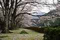 早明浦ダム - panoramio (11).jpg