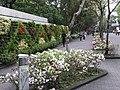 舟山路 Zhoushan Road - panoramio.jpg