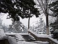 雪中一景 - panoramio.jpg