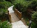 鳝溪登山道岔路 - A Fork of Shanxi Creek Path - 2013.01 - panoramio.jpg