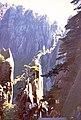 黄山b - panoramio.jpg