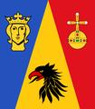 ..Stockholm Flag (SWEDEN).png