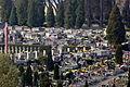 0369 Zentralfriedhof Sanok.JPG