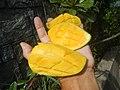 0526Cuisine food in Baliuag Bulacan Province 79.jpg