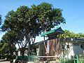 09471jfAlexis G. Santos National High School Liciada, Bustos Bulacanfvf 11.jpg