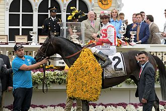 Cloud Computing (horse) - Cloud Computing with jockey Javier Castellano after winning the 2017 Preakness Stakes.